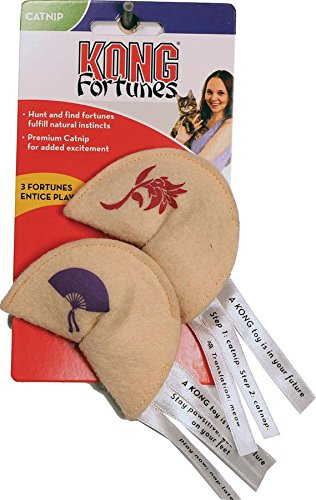 KONG FORTUNE COOKIE 2PK