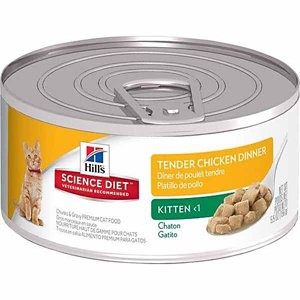 Hills Science Diet Kitten Tender Chicken Dinner 5.5OZ 24 Count Case